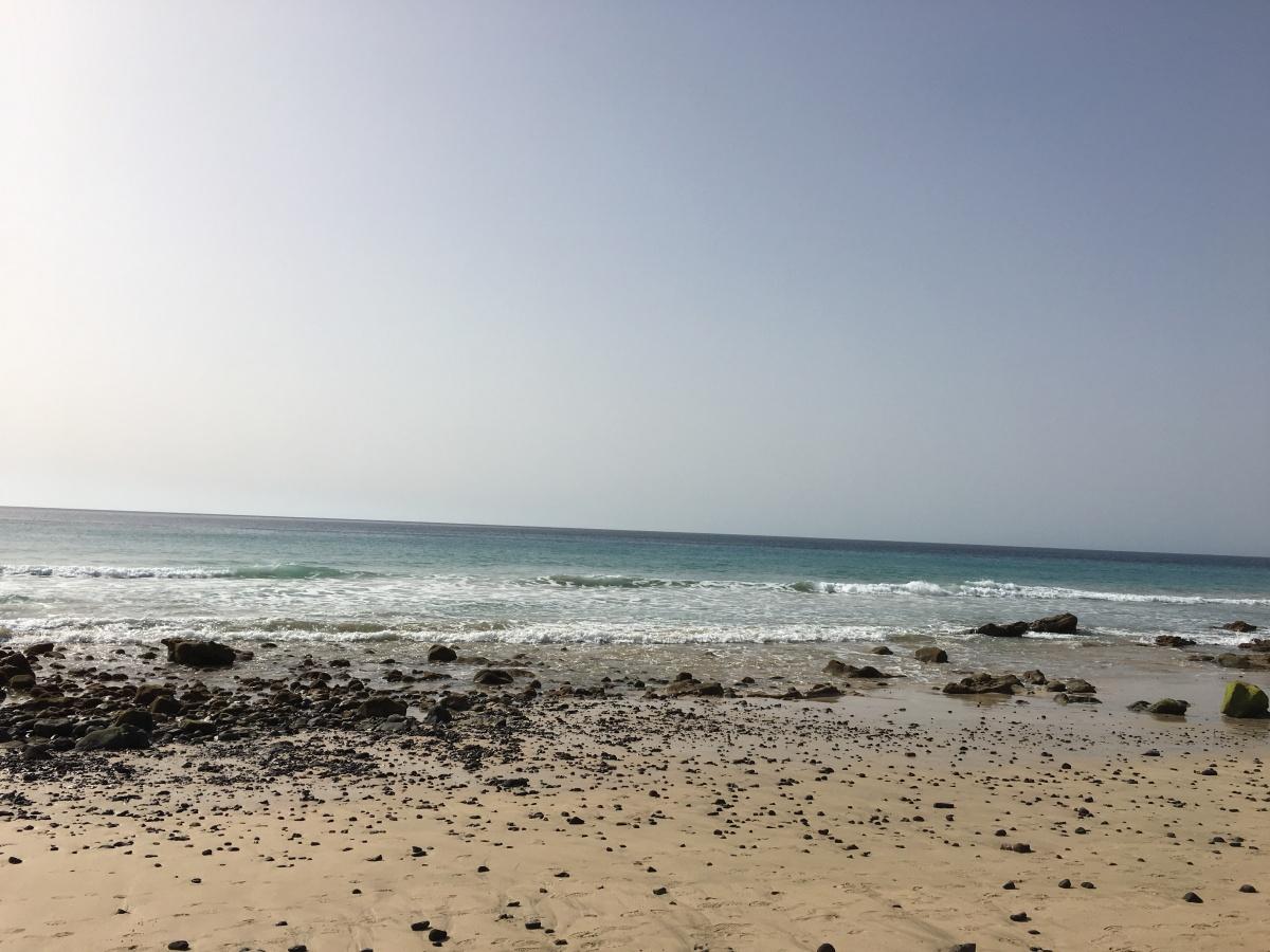 La plage, les dauphins, les cocktails: une semaine derêve!